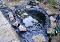 Как самостоятельно построить пруд